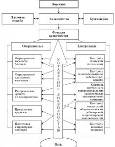 казначейство-структурно-функциональная-модель
