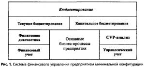 система-финансового-управления